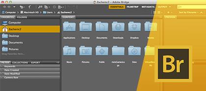 Curso Online Adobe Bridge Treinamento Básico